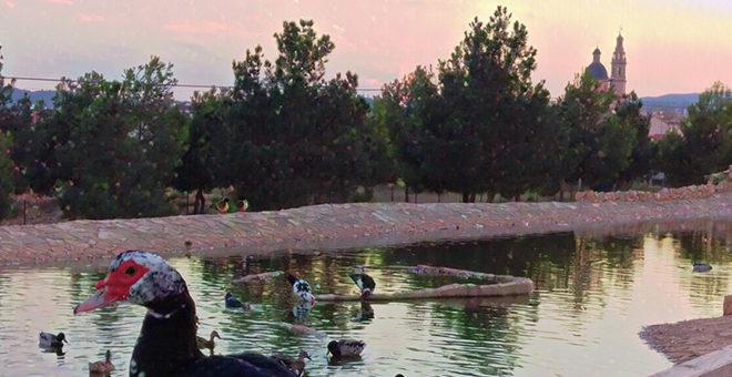 El lago de La Lomiquia se convertirá en un macroparque de pesca